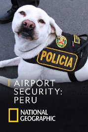 Airport Security: Peru