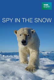 Spy in the Snow
