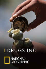 Drugs Inc S6