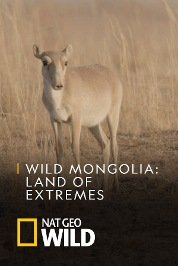 Wild Mongolia: Land of Extremes