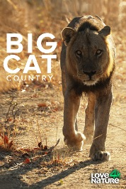 Big Cat Country S1
