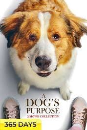 A Dog's Purpose 2-Movie Collection (365 Days Viewing)