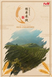 Silk Road Delicacies: Rice Unearthed