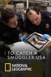 To Catch a Smuggler: USA