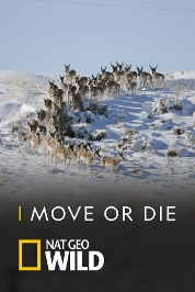 Move or Die