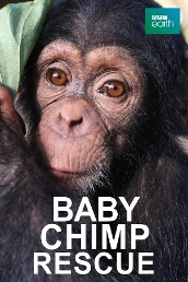 Baby Chimp Rescue S1