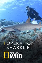 Operation Sharklift
