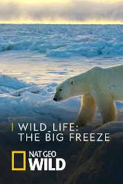 Wild_life: The Big Freeze