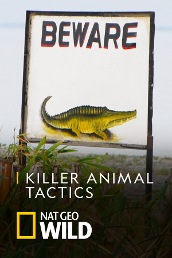 Killer Animal Tactics
