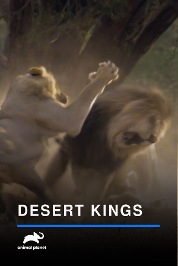 Desert Kings
