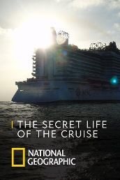 The Secret Life of the Cruise