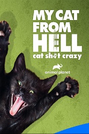 My Cat From Hell:Cat Sh#t Crazy