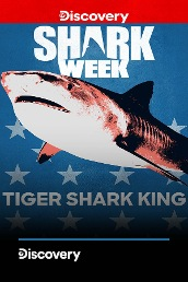 Tiger Shark King
