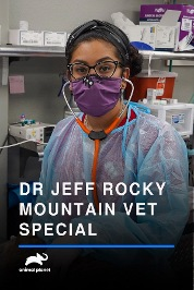 Dr. Jeff: Rocky Mountain Vet Pandemic Emergency